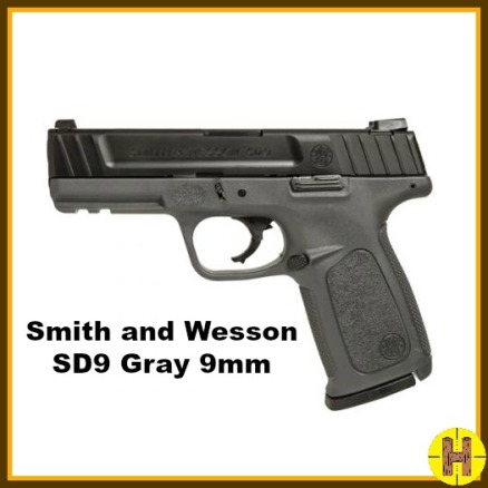 S&W SD9 Grayho